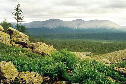 Northern-Ural